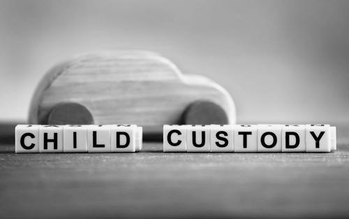 MN De Facto Custody Modification